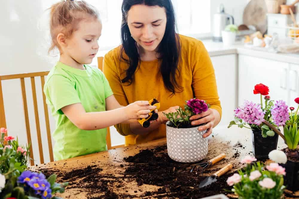 Simply Mumma_Gardening during Mother's Day