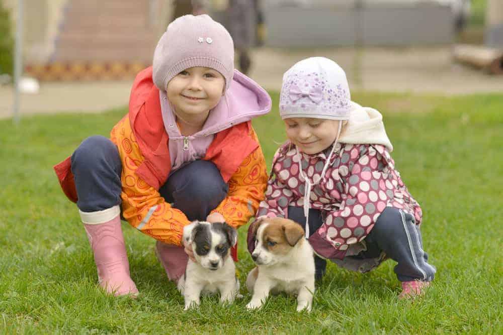 Simply Mumma_Outdoor Exposure for Good Gut Health in Kids