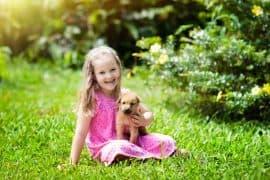 Simply Mumma_Kids and Responsible Pet Ownership